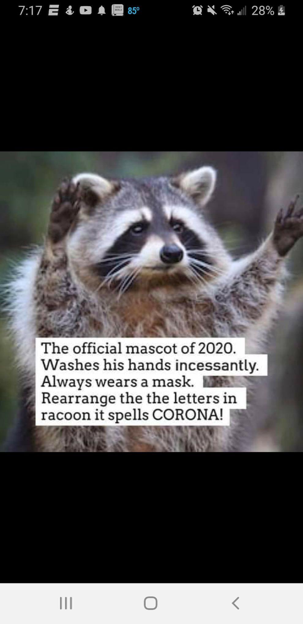 No Pasaran ! в 2020 г