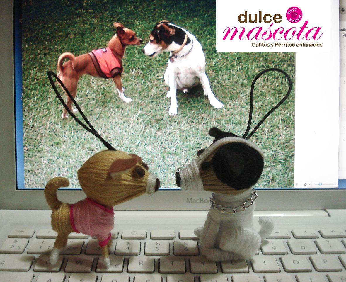 Dogs handmade by wool