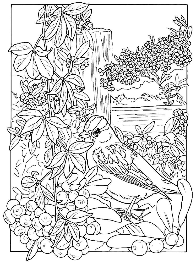 Pin De Brandon Waluigi En Arte Dibujos Tumblr Para