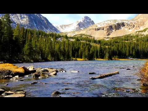 10 Videos of Nature Sounds for Relaxation | Hope | Nature