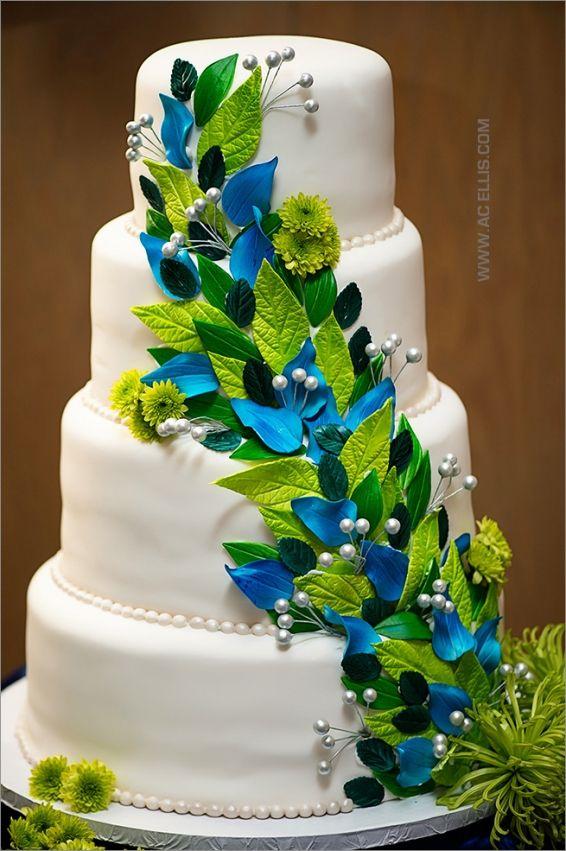 Sioux Falls Sd Birthday Cake Peacakes Cookies Pinterest