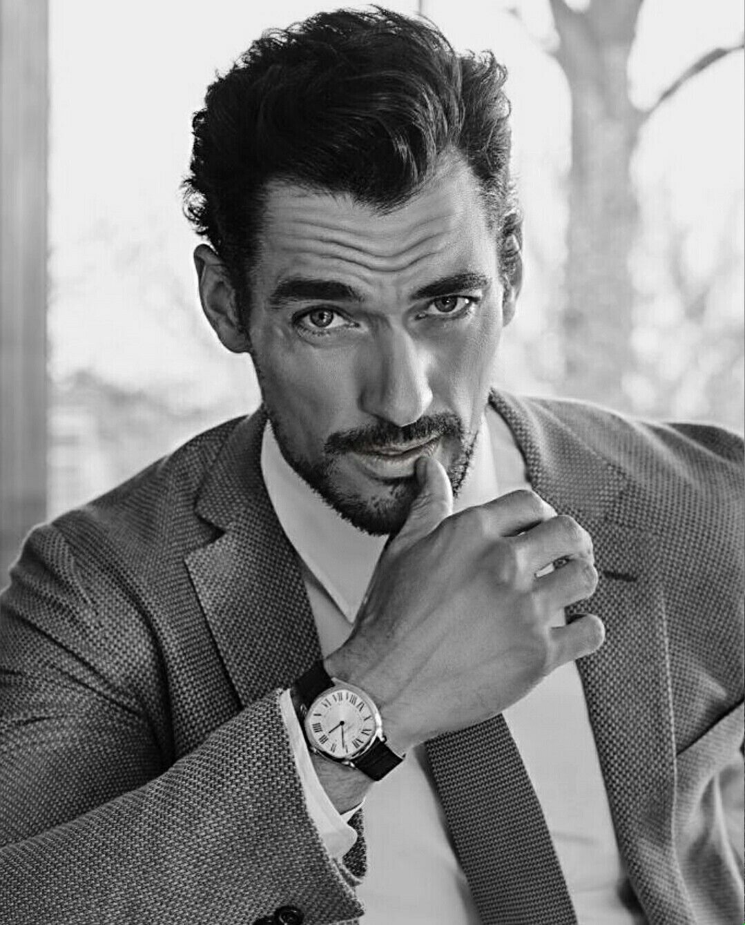 Pin by Tanja Gonzales on Gandy, more Dandy than Candy ...