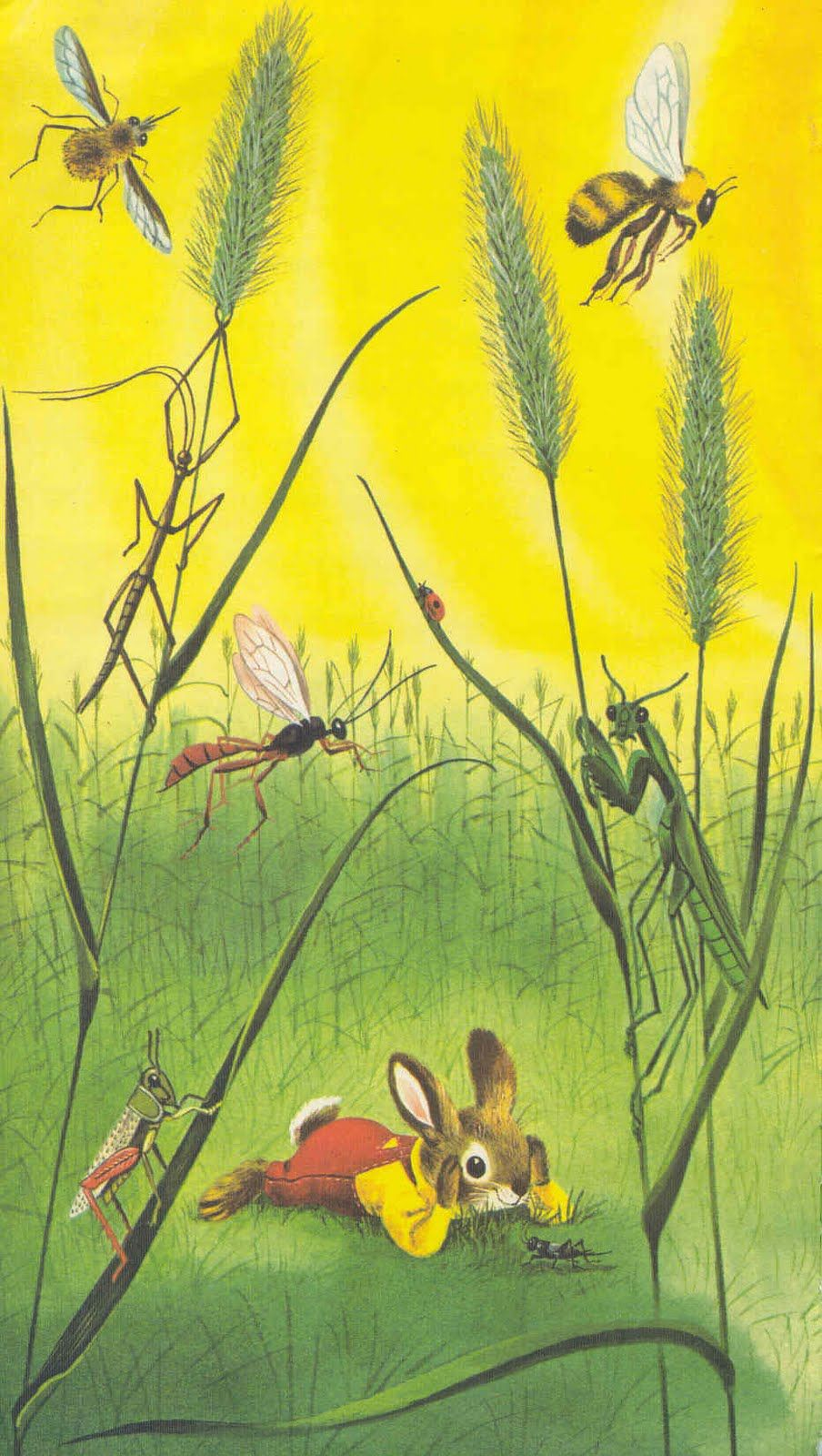 I Am A Bunny by Ole Risom, illustrated by Richard Scarry