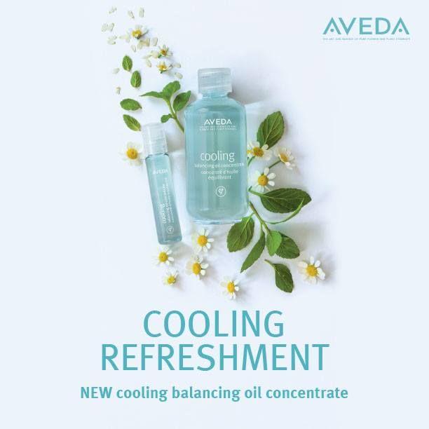 Cooling Balancing Oil Concentrate Aveda Aveda Skin Care Good Skin
