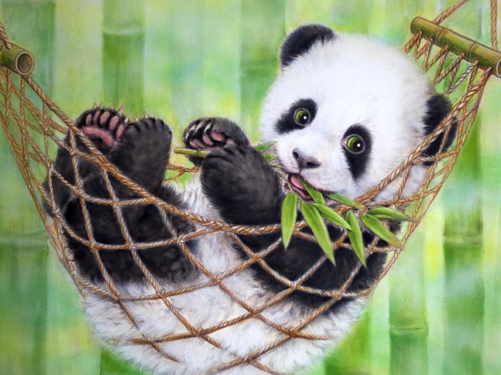 Free Download Cute Panda Wallpapers Tumblr Wallpapers Backgrounds Images Art Photos Cute Panda Wallpaper Panda Painting Cute Panda