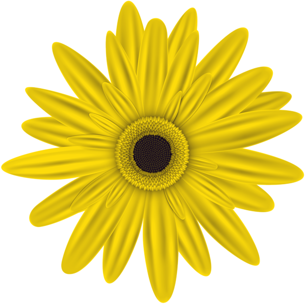 Yellow Flower Clip Art Png Image Flower Clipart Digital Flowers Yellow Flowers