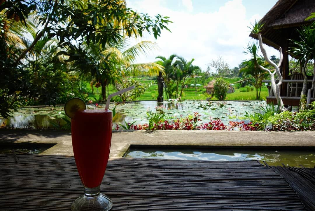Rizières à Ubud 😍 . #photo #picture #love #photos #photograph #beauty #photographer #photography #nature #photooftheday #instapic #instagood #insta #backpack #backpacker #backpacking #beautiful #vacation #trip #naturephotography #naturelovers #bali #indonesia #ubud #picoftheday #pic #color #colors #landscape #landscapephotography