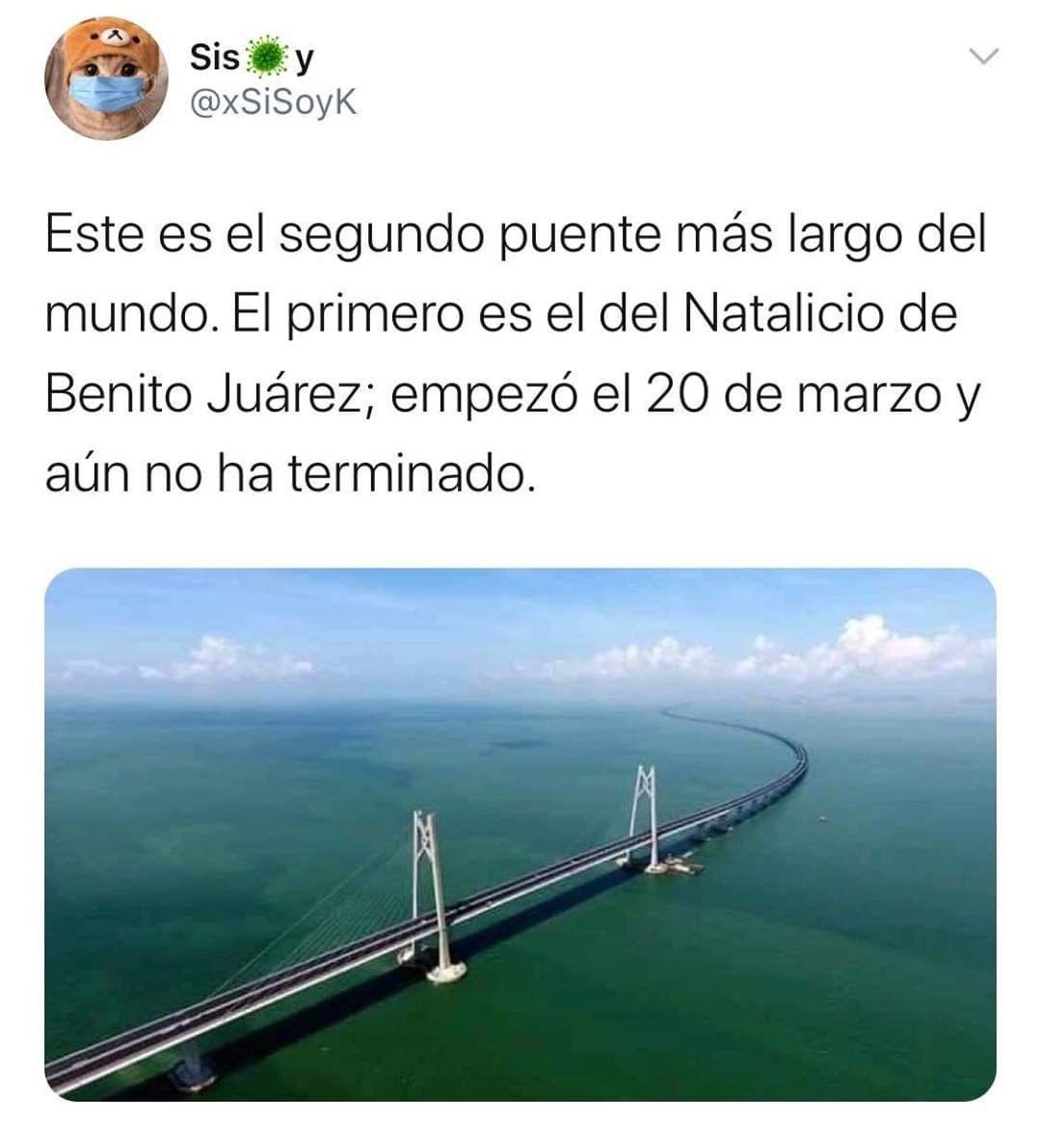 El Puente Mas Largo Del Mundo En 2020 Memes Divertidos Memes Escolares Meme Gracioso