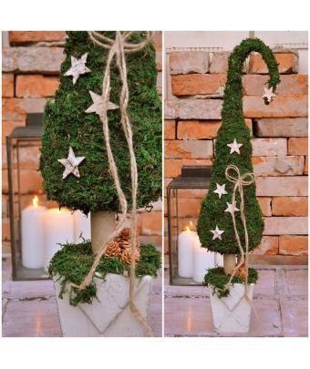 Natur Deko Advent Weihnachten Moos Tannenbaum