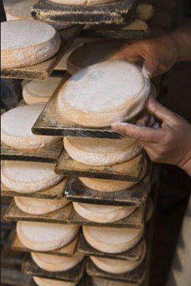 reblochon ~ fromage de Haute-Savoie FRANCE à découvrir avec les Guides du Patrimoine des Pays de Savoie  http://www.gpps.fr/Guides-du-Patrimoine-des-Pays-de-Savoie/Pages/Site/Visites-en-Savoie-Mont-Blanc/Savoie-Propre/Val-d-Arly/Flumet-Cooperative-fruitiere-du-Val-d-Arly