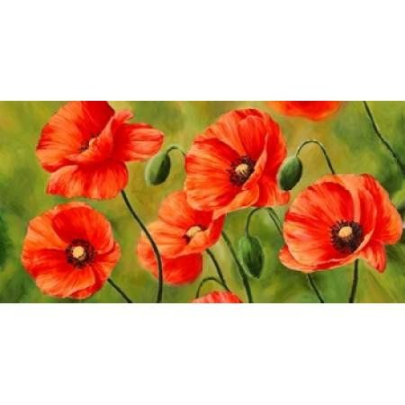 Field Of Poppies Canvas Art Luca Villa 10 X 20 Poppy Painting Poppy Art Art