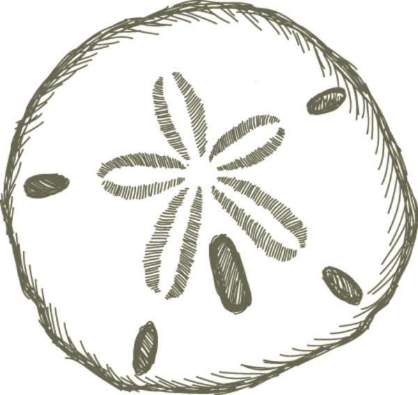 Sand Dollar Free Images At Vector Clip Art Online Sand Dollar Tattoo Clip Art Borders Clip Art
