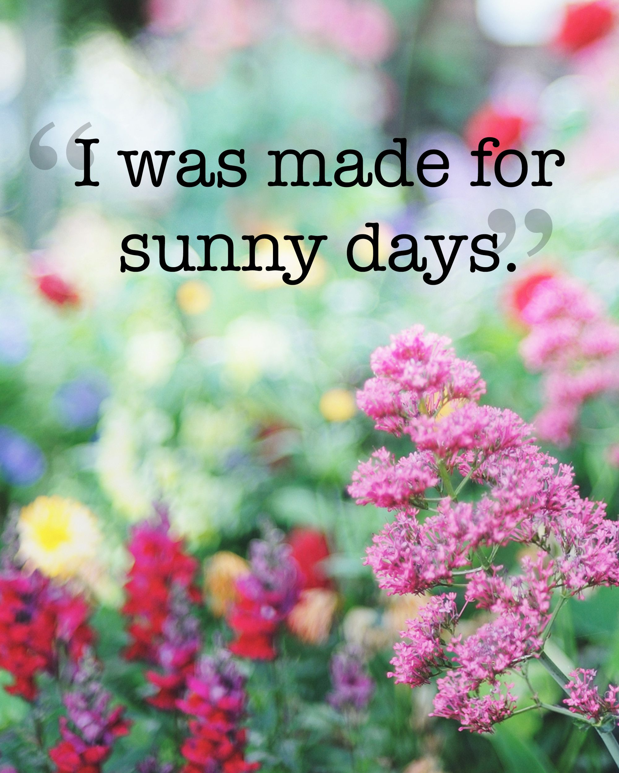20 Absolutely Beautiful Quotes About Summer  Summer, Summer quotes and Thoughts