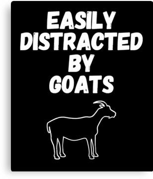 827a49ad Easily Distracted By Goats Funny Goat Lover Gift | Slim Fit T-Shirt ...