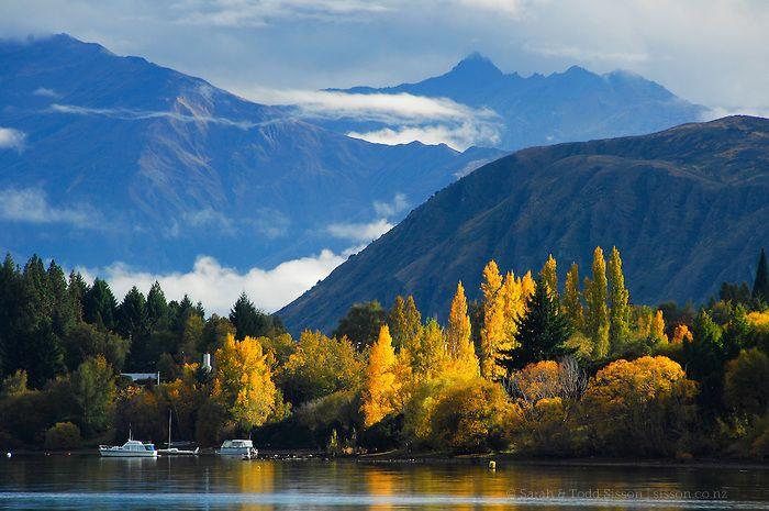 autumn poplar trees mountains lake wanaka new zealand. Black Bedroom Furniture Sets. Home Design Ideas
