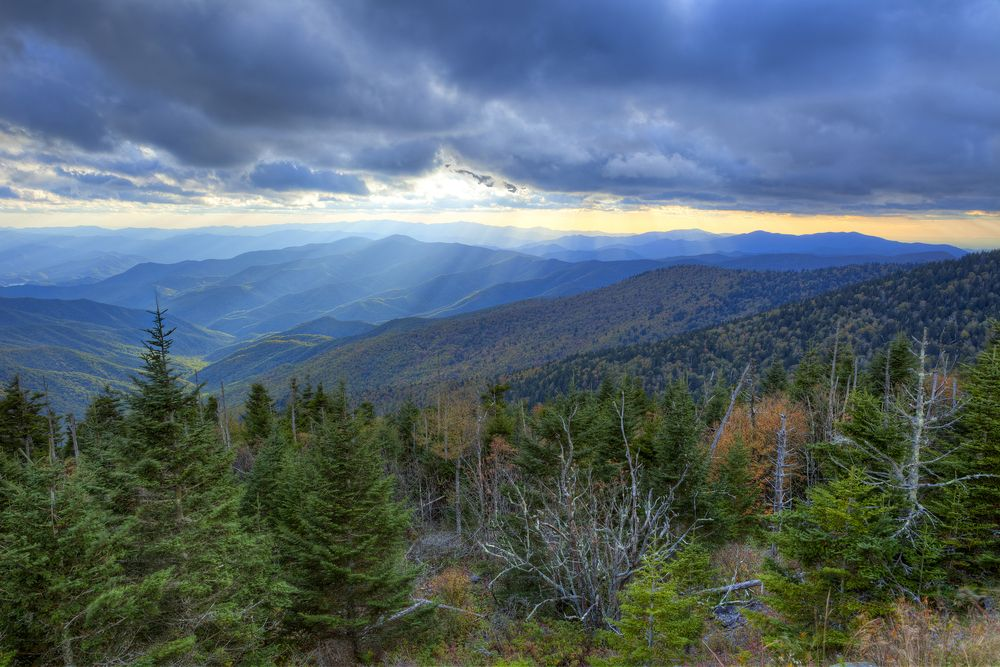 The Great Smoky Mountains - Love this home