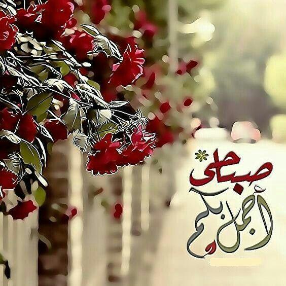 Desertrose صباحي بكم أجمل Good Morning Picture Morning Greeting Beautiful Morning