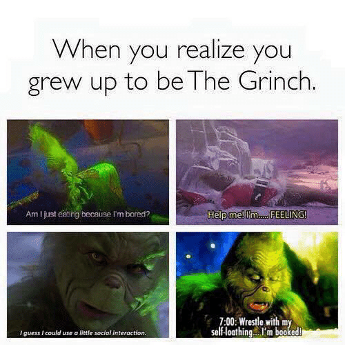 When You Realize You Grew Up to Be the Grinch Am Ljust