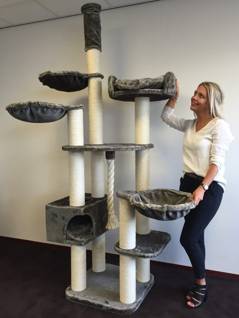 Cat dream extreme deluxe grey cat tree scratching