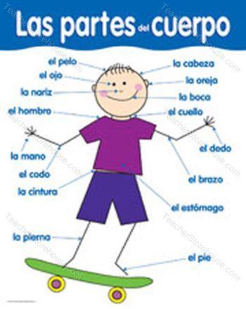 spanish@ariel / Body parts - Partes del Cuerpo | summer school-elem ...