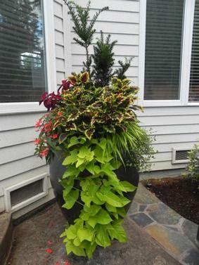 Container gardening | Sublime Garden Design | Award-winning Landscape Design & Architecture