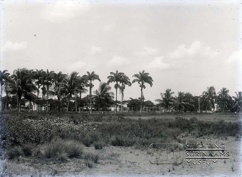 Plantage te Nickerie. Datum: Locatie: Nickerie, Suriname Vervaardiger: Augusta Curiel Inv. Nr.:  gn-23-263 Fotoarchief Stichting Surinaams Museum