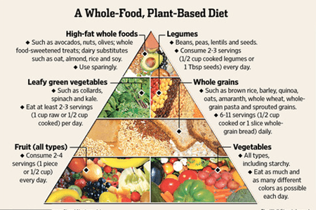 Plant-Based Diet Beginners Guide