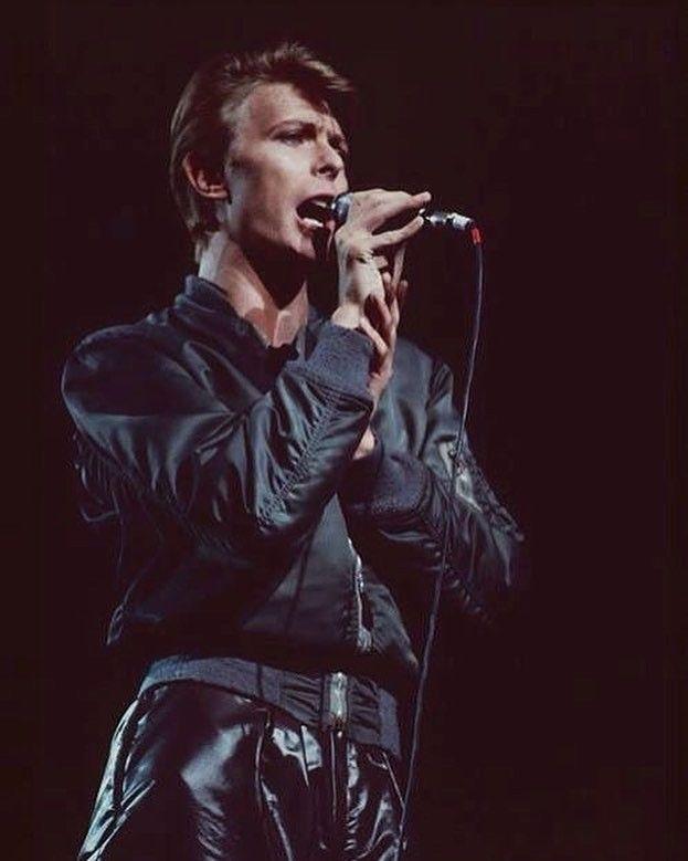 David Bowie, 1978 | David bowie berlin, David bowie, BowieRhere Popular Magazine