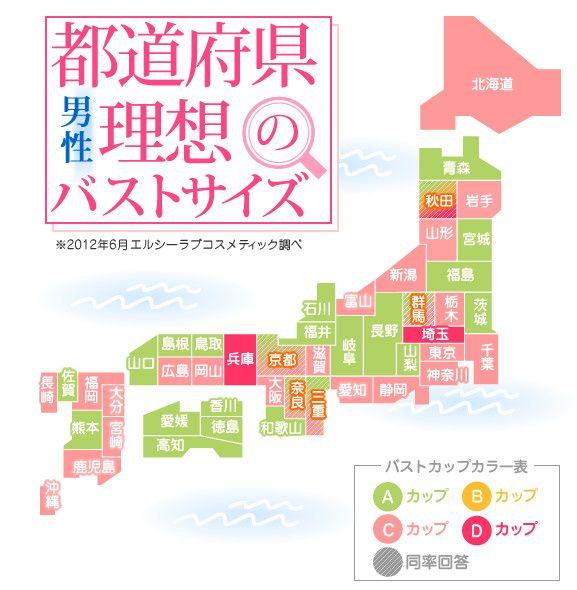 ちっぱい速報 47都道府県別 理想のバストサイズ 判明 全国的に A