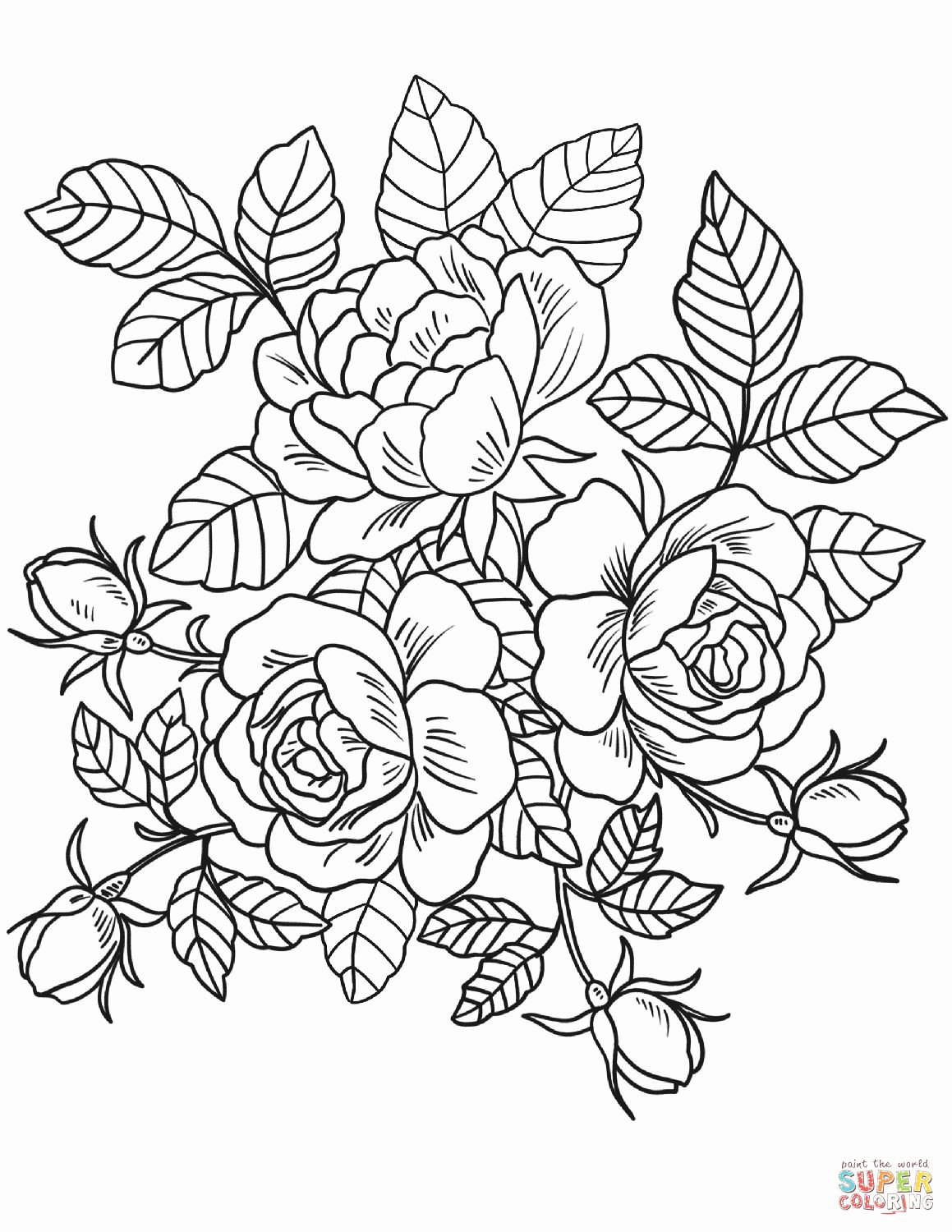 Flower Coloring Pages Adults Unique Roses Flowers Coloring Page Detailed Coloring Pages Rose Coloring Pages Printable Flower Coloring Pages
