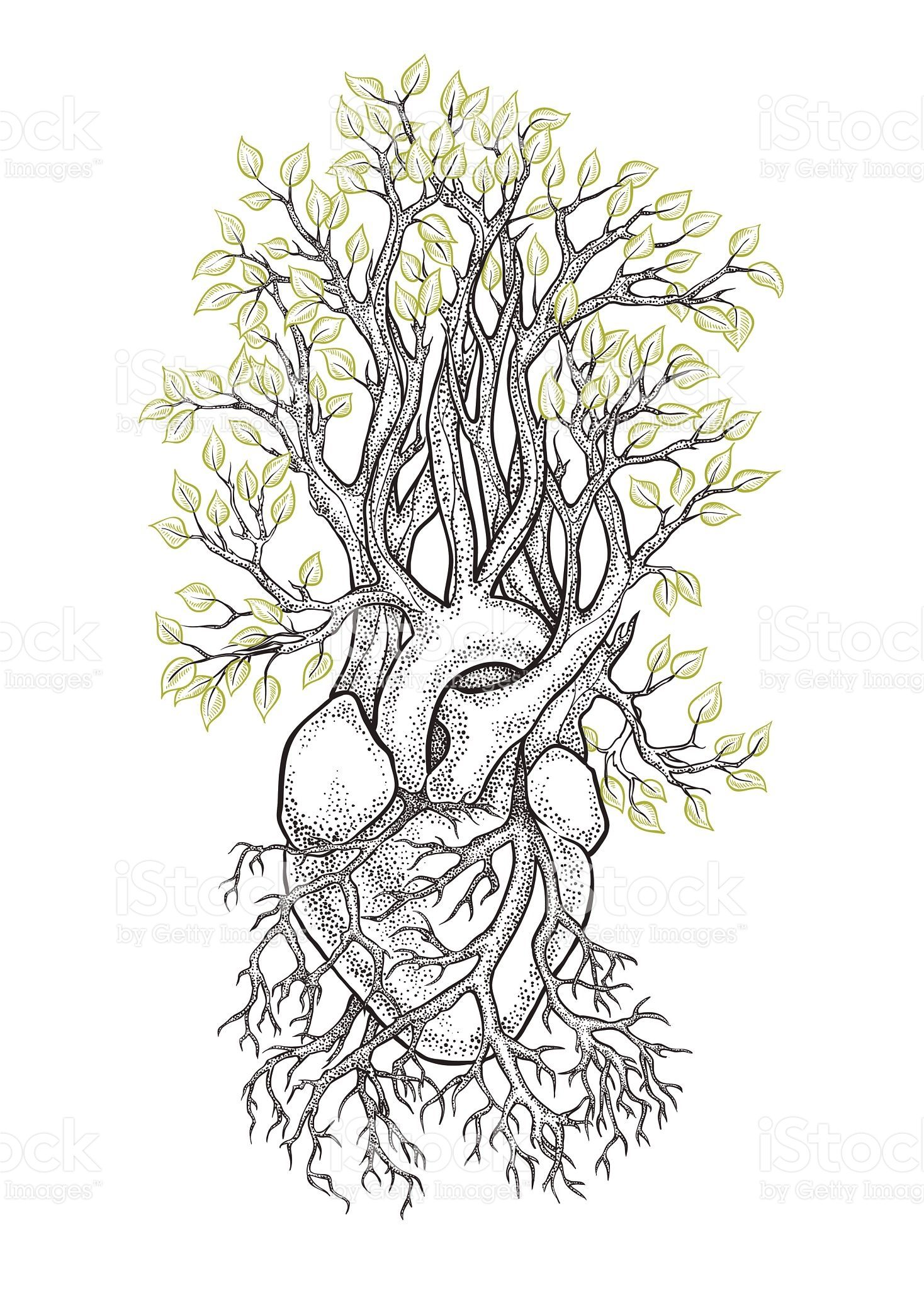 Human anatomical heart with veins like roots, from which grows a ...
