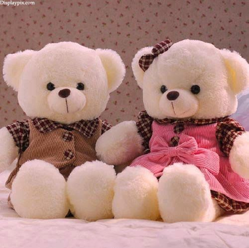 Sweet Cute Teddy Bear Girls Profile Pictures Dps Stylish Dps