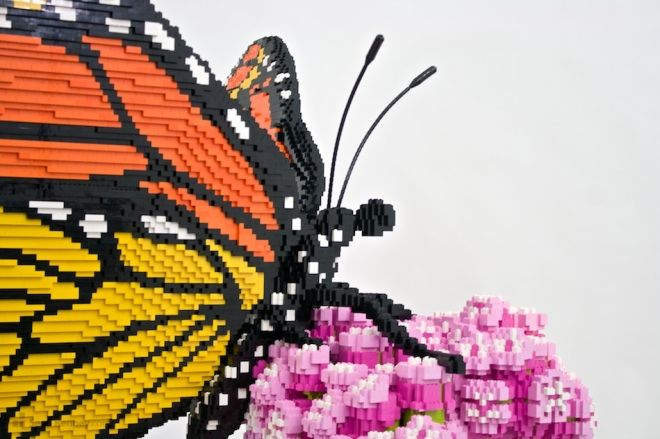 A million #LEGO pieces create incredible larger-than-life #nature #sculptures