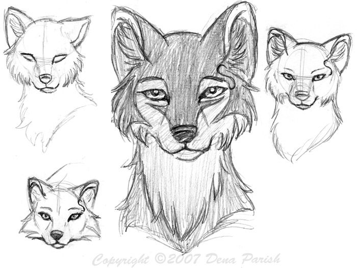 Drawings Of Wolf Faces How To Draw Anime Manga And Rose Tutorial Online Wolf Drawing Wolf Face Drawing Wolf Face
