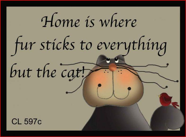 Cats make a home a home.