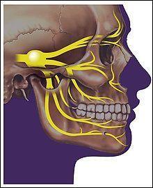 Fibromylgia facial nerve clip...Actual 'foreplay'.....tongue