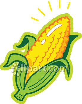 Clipart Com Closeup Royalty Free Image Of Agricultural Agriculture Cob Cobs Corn Corns Country Crop Crops E Cartoon Clip Art Royalty Free Images Royalty Free