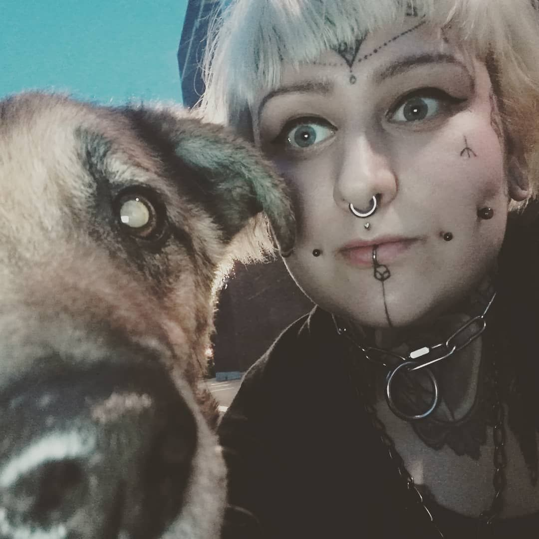 schäferhund schäferhundberlin straßenköter ilovemydogs
