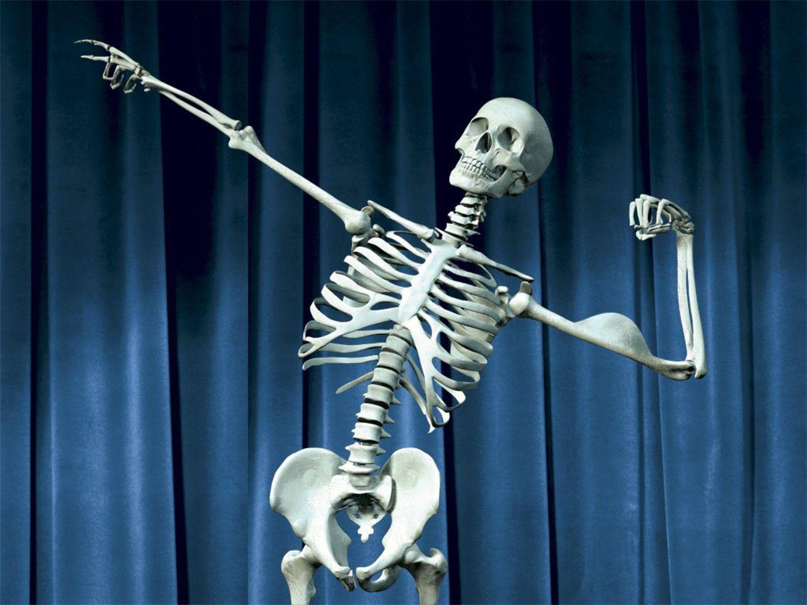 Луки открытках, прикольный скелет человека в картинках