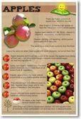Wasteful Diet Food Nutrition #fitness #dietglenn