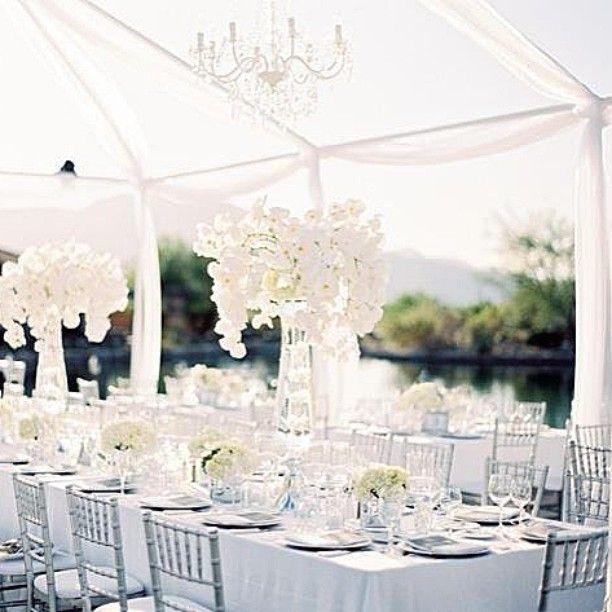 Just stunning Such a beautiful location ✨ #wedding #weddingdecor #weddingideas #whiteonwhite #weddingplanner #weddinginspiration #eventplanner #love #elegant #love #bridalideas #weddings #allwhiteweddings #amazing #beautiful #decorations #flowers #roses #weddingday #chic