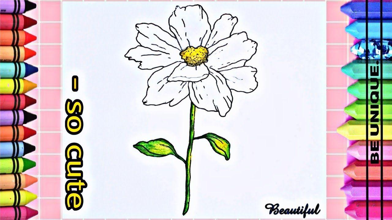 تعليم الرسم كيف ترسم وردة بيضاء بطريقة إحترافية ومتقنة للمبتدئين م