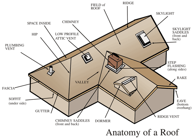 Here You Will See The Anatomy Of A Roof The Different Types Of Component Generally A Roof Is Consisted Roof Roofing Roofr Roofing Roof Repair Roof Design