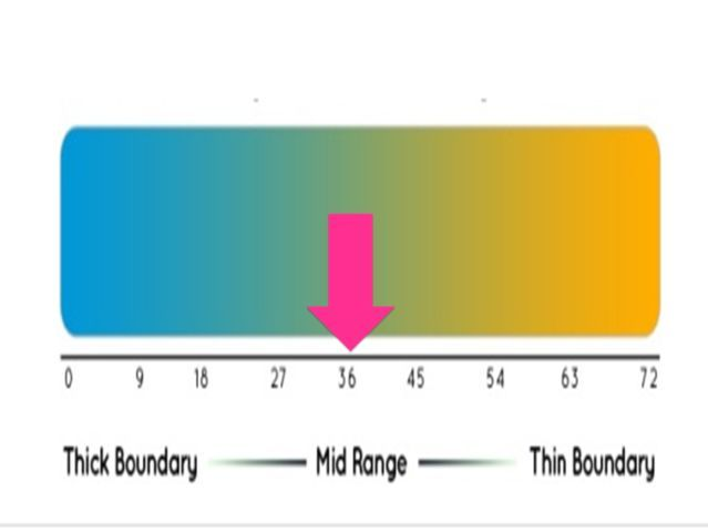 You have mid-range emotional boundaries. You possess qualities of both thin and thick boundary people. Like thin boundary people, you have a sensitive antennae which reacts strongly to the energies of people around you, and their emotions tend to rub off on you easily. You feel things very strongly. Also, like thick boundary individuals, you are prone to internalizing your feelings instead of wearing your emotions on your sleeve. You have a good balance of sensitivity and composure.