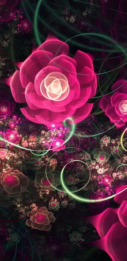 Samsung Rose Wallpaper Hd