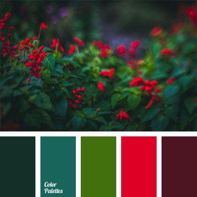 Contrasting Color Palettes Page 10 Of 61 Color Palette