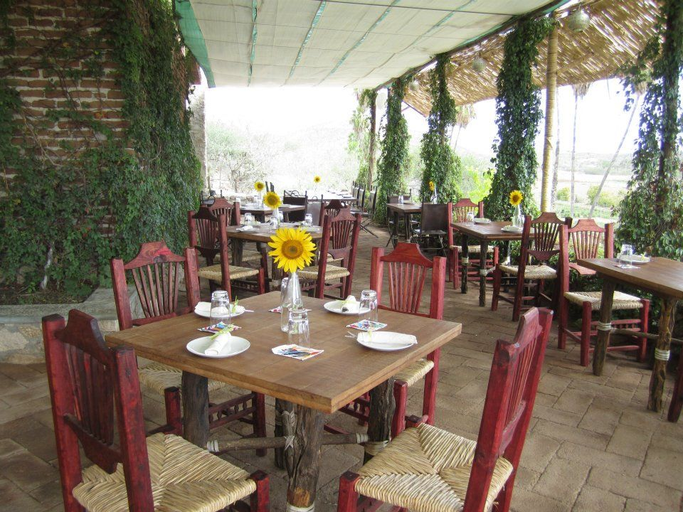 Huerta Los Tamarindos Galeria Organic Food Farm