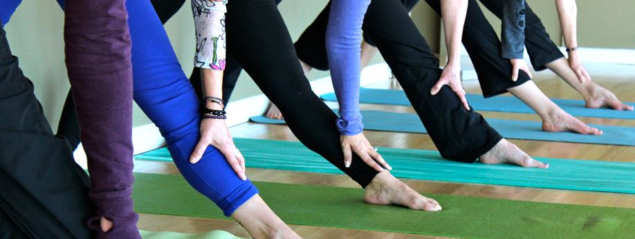 The Yoga Studio Calgary Yoga For Beginners Basic Yoga Yoga