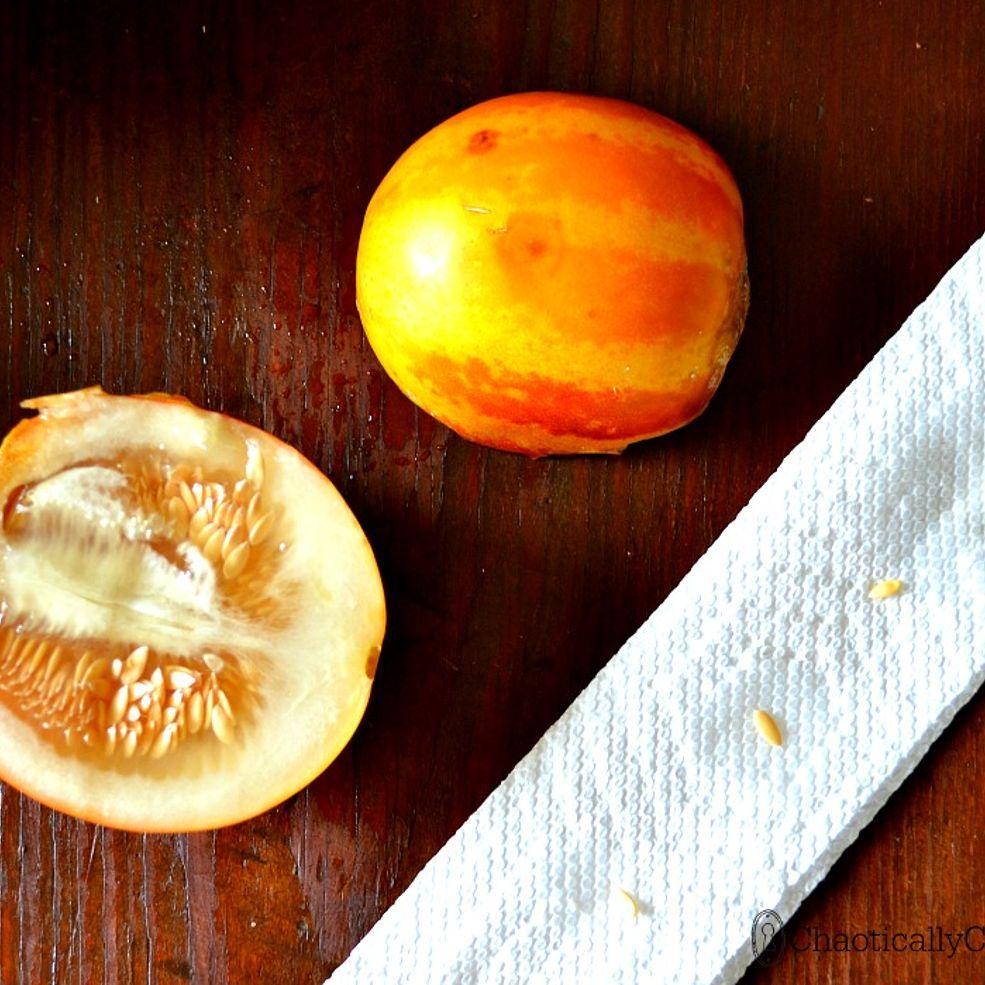 Mini Melon Air Freshener Plum Granny Wooden kitchen