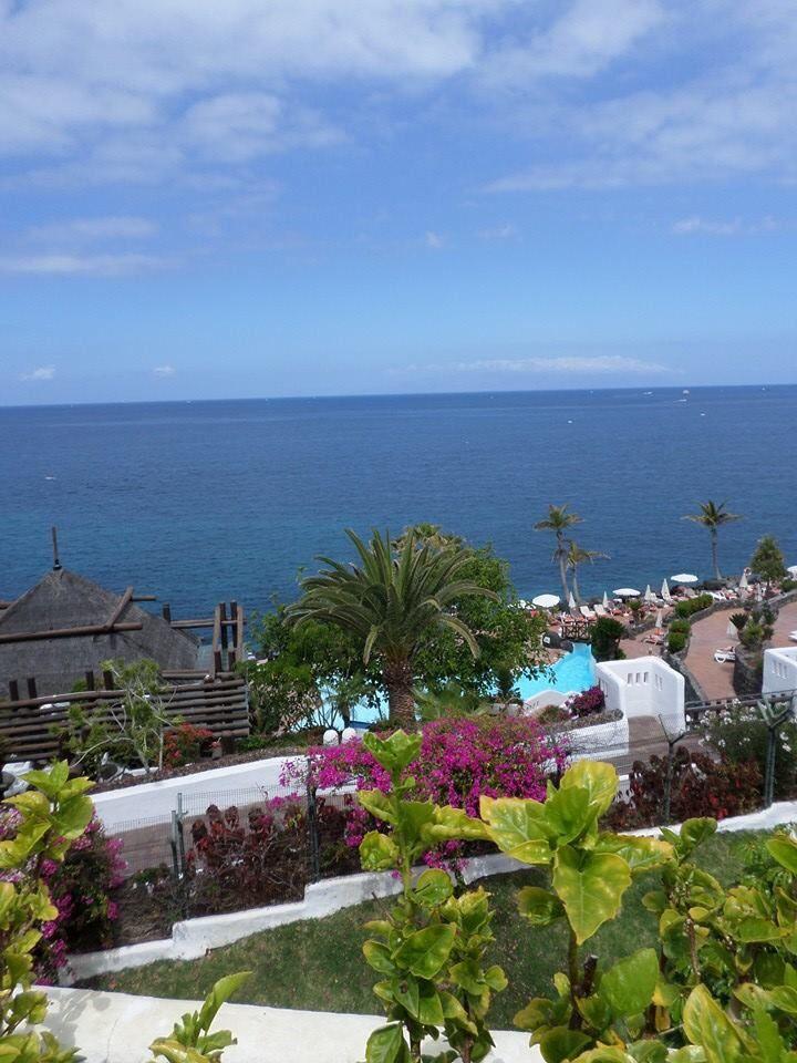 Jardin tropical tenerife wedding beach pinterest - Jardines tropical tenerife ...